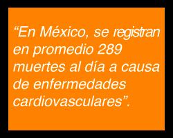 Causas de Muerte por Enfermedades Cardiovasculares en México