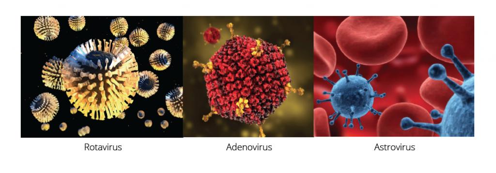 Rotavirus, Adenovirus, Astrovirus