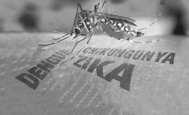 Dengue, Zika y Chikungunya: Lo que debes saber de cada uno y sus diferentes síntomas