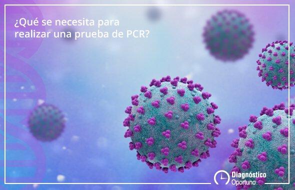 ¿Cómo funcionan las Pruebas de PCR?